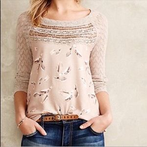 Anthropologie One September Aves Feather Lace Top